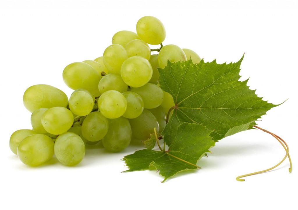 Subús Vectalia reparte uvas entre sus usuarios de Alcoy
